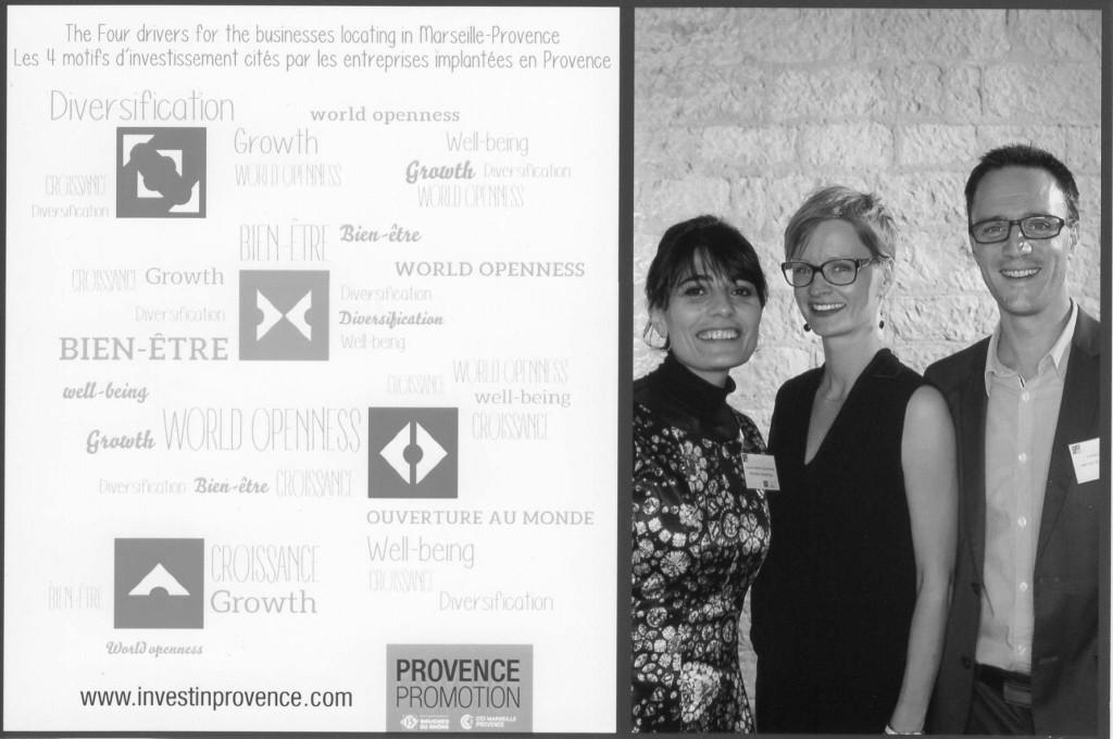 Kristin Høgsve-Mouton provider of cultural consulting